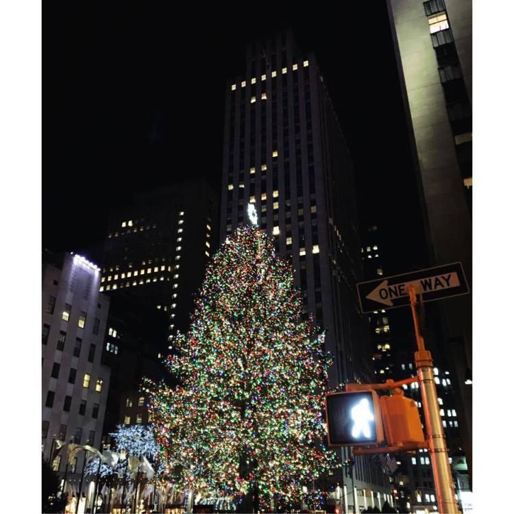 ChristmasTreeNYCbyAnaisthinks