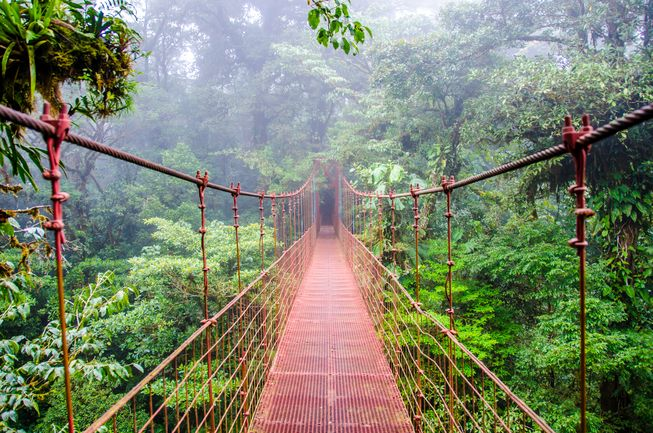 costa-rica-suspension-bridge.jpg.653x0_q80_crop-smart.jpg
